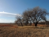 Scenery of the Rocky Mountain Arsenal National Wildlife Refuge in Denver, CO Feb. 12. photo by Maddy Medina