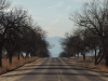 A road in the Rocky Mountain Arsenal National Wildlife Refuge in Denver, CO Feb. 12. photo by Maddy Medina