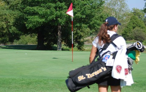 Senior golfers place at State tournament