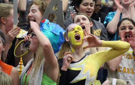 Stars lose to Storm on emotional senior night