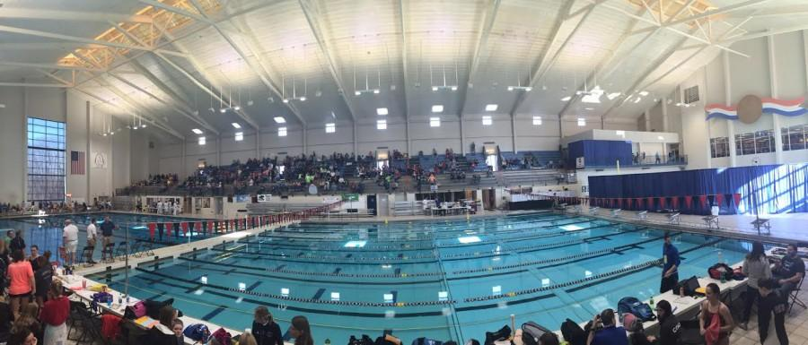 The+swim+and+dive+teams+competed+previously+in+the+2016+MSHSAA+Swim+and+Dive+State+Championships.+photo+courtesy+of+Gabby+Ayala