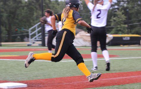Stars softball sweeps the Storm