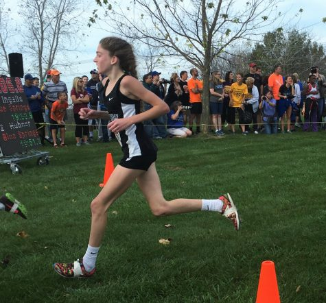 Students compete in State cross country meet