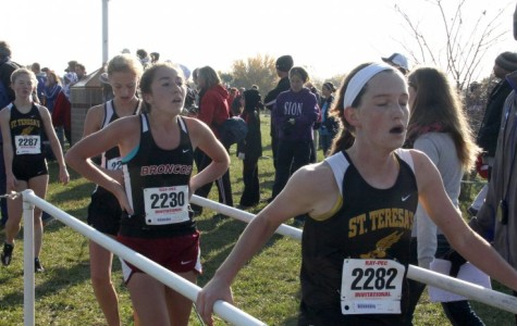 Gallery: Cross country sectionals