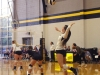Sophomore Megan Cotter jumps to serve during the Stars' game against the Sion Storm. photo by Kat Mediavilla