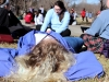 Junior Amber Brownlee rests on the ground during activity period Jan. 28. photo by Maggie Knox