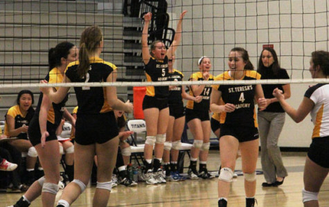 Volleyball team places second at sectionals