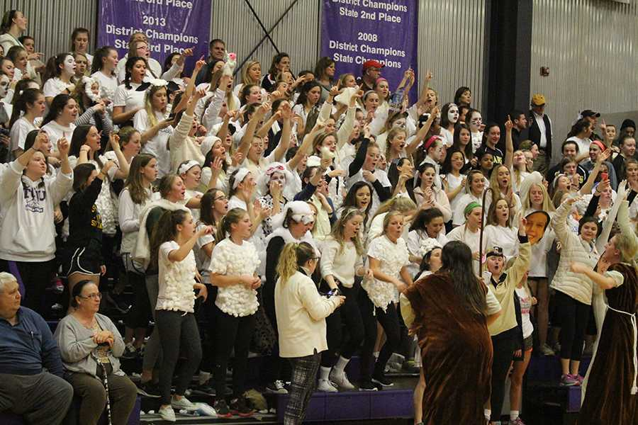 The STA student section cheers at the varsity basketball game against Notre Dame de Sion High School Jan. 29. The theme for the game was sheep, led by seniors MaryMichael Hough and Gabby Keller dressed as shepherds. photo by Kat Mediavilla