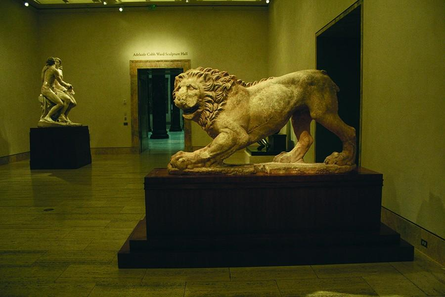 An ancient marble tiger sits in the Adelaide Cobb Ward Sculpture Hall of the Nelson Atkins Museum of Art. The sculpture hall, containing many ancient sculpture, is meant to serve as the heart of the museum.