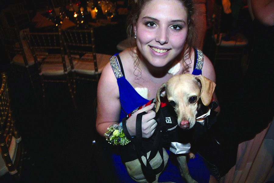 Senior Tricia Melland and service dog, Kenny, at Prom April 8. Kenny, to fit formal attire, was dressed in a puppy tuxedo vest. photo by Cassie Hayes