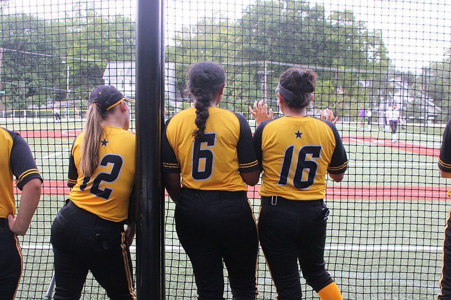 web+softball+1