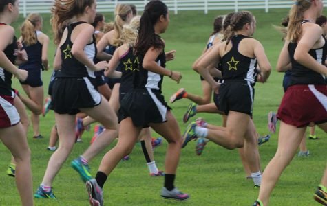 Cross country wins second in opening meet