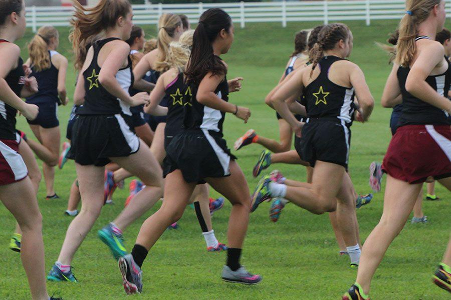 Members of the STA cross country team start their race and run as quickly as possible, in hopes of making it to the finish line with a time lower than their previous records. photo by Anna Louise Sih