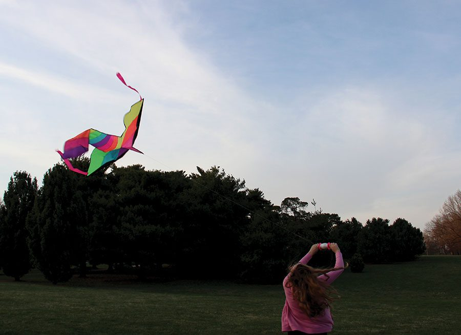 A girl flies a kite with the wind at Loose Park. photo by Anna Louise Sih