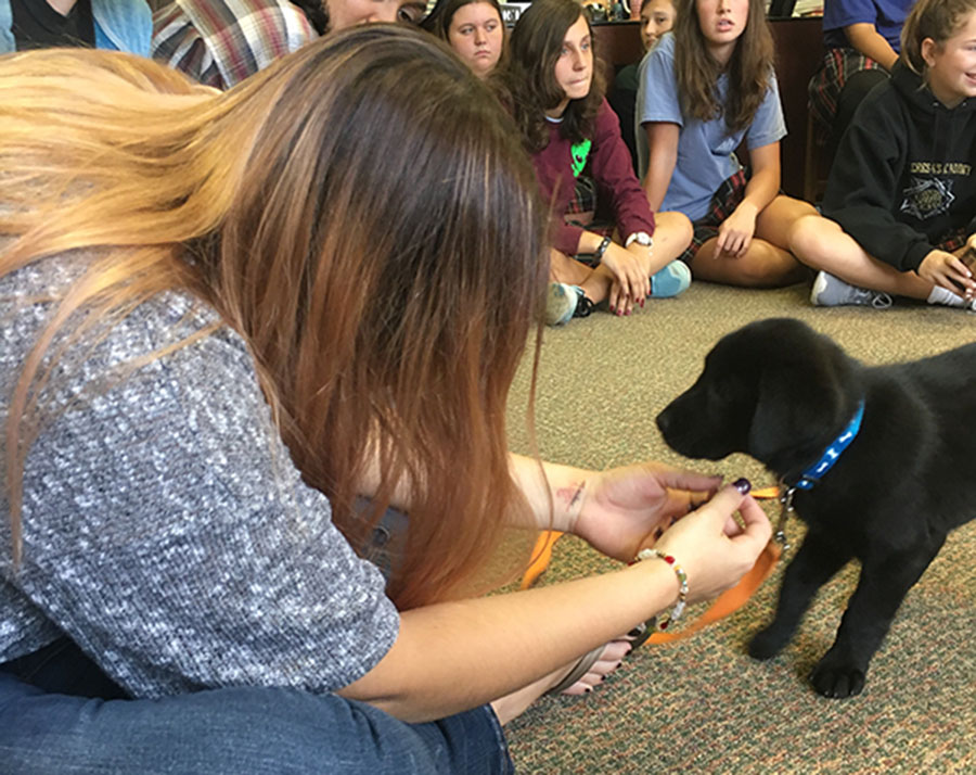 Students pet a puppy from Unleashed Pet Rescue and Adoption. photo by Katy Rouse