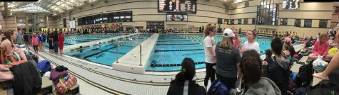 STA swim and dive teams compete at COMO Invitational