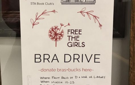 Flyers for the Free The Girls Bra Drive were hung throughout the school to promote donations of gently used bras. The drive was sponsored by the school's book club. photo by Lucy Hoop