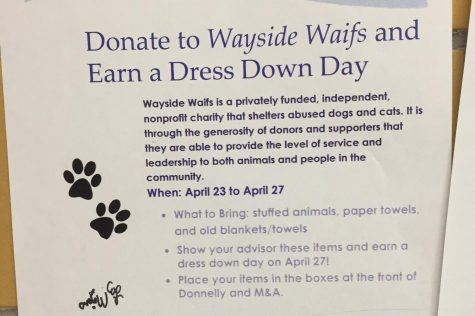 National Honor Society hosted Wayside Waifs fundraiser