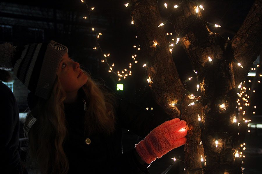 Senior Jane Kincaid checks the lights on the trees Dec. 3. Seniors gathered in the quad at 6:30 a.m. to decorate the Quad for Christmas. photo by Maddie Loehr