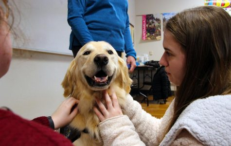 Therapy dog begins visits to STA