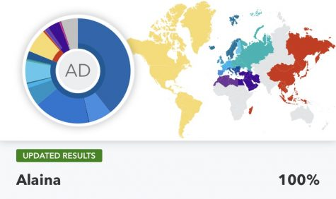Freshman Alaina Durone's DNA is reported through the 23andMe website. Durone is mostly Southern European. photo courtesy of Alaina Durone.