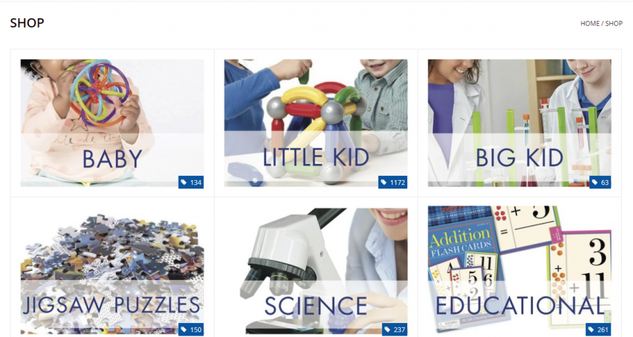 Brookside Toy and Science's website showcases it's various types of products Feb. 1. The website allows for navigation between online checkout and product descriptions. photo by Mara Callahan